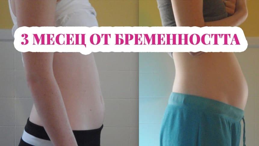 3 месец от бременността